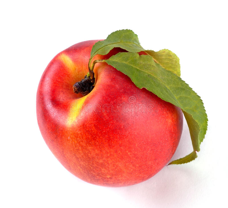Download Smooth peach stock image. Image of fresh, peaches, sweet - 32836579