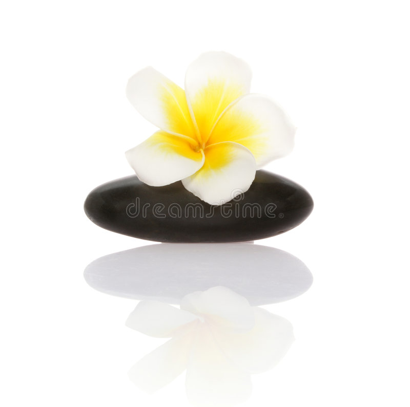Download Smooth Pebble And Frangipani Flower Stock Photography - Image: 1408512