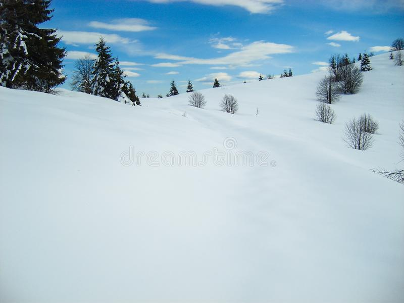 Smooth rolling snow covered hills in mountains with trees. Soft smooth blanket of snow over mountain hills with various trees and blue sky stock image