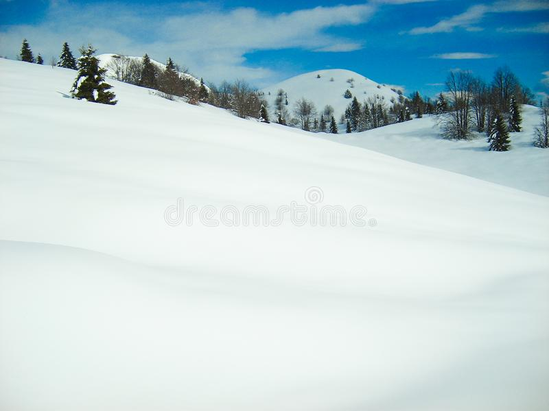 Smooth blanket of snow mountains and blue sky. Smooth soft blanket of snow hills with mountain and blue sky in background. pine trees dot landscape and cotton stock photo