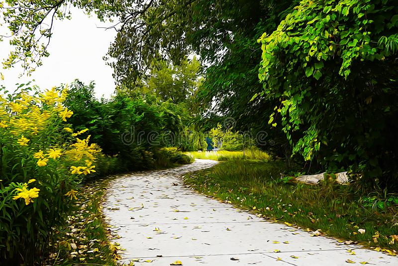 The pathway wags in the park between green trees and yellow flowers. Oil painting picture royalty free illustration