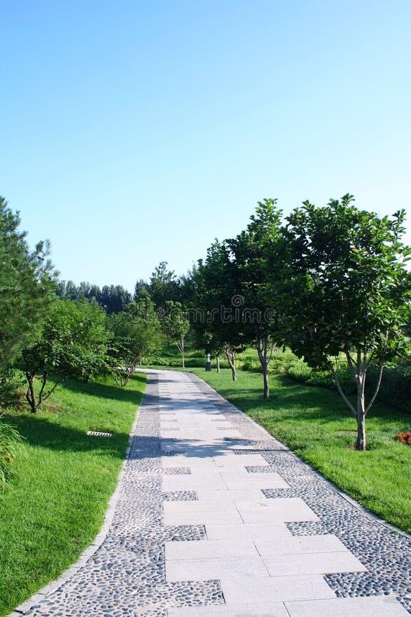 Smooth walkway