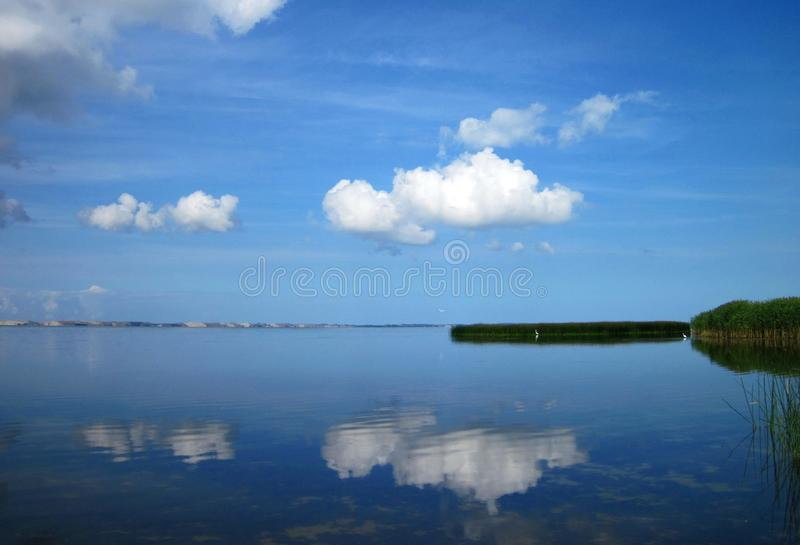 Curonian spit, beautiful cloudy sky and birds, Lithuania. Smooth water in Curonian spit, Neringa in another side and beautiful cloudy sky royalty free stock photo