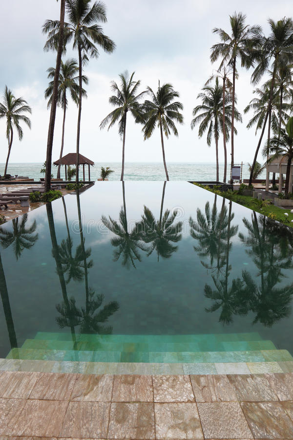 Download Smooth Water Pools Reflects The High Scenic Palm Stock Image - Image: 19469851