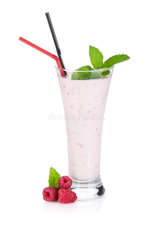 Smoothie молока поленики с мятой стоковое изображение