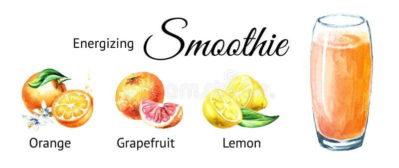 Smoothie de activación con la naranja, el pomelo y el limón Ejemplo dibujado mano de la acuarela aislado en el fondo blanco fotos de archivo