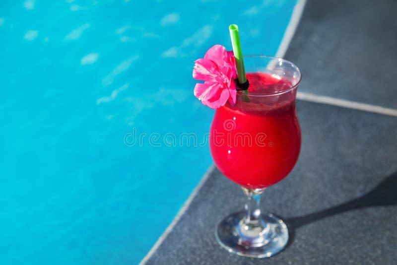 Smoothiegetränkcocktail-Swimmingpool Saft der Wassermelone roter frischer lizenzfreie stockfotografie