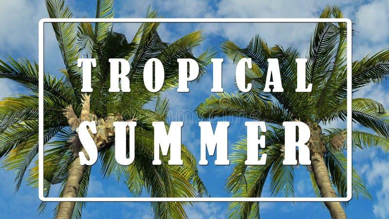 Smsa - tropisk sommar - palmträd mot bakgrund för blå himmel stock illustrationer