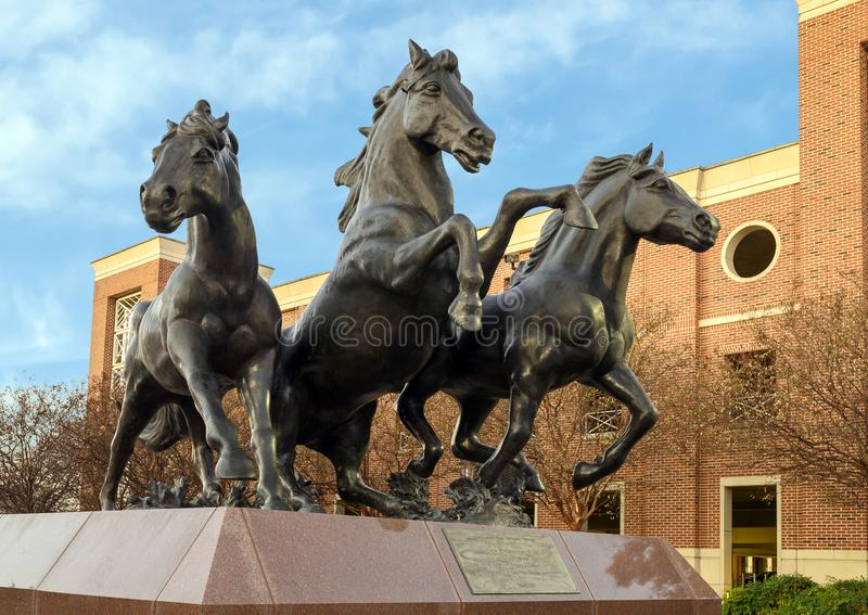 `SMU Mustangs`, a bronze sculpture by artist Miley Frost ont he campus of Southern Methodist University in Dallas, Texas. Pictured is a bronze sculpture by stock image