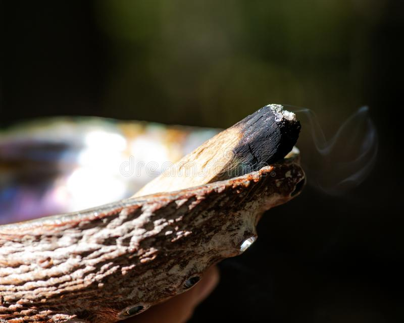 Smudging ceremony using Peruvian Palo Santo holy wood incense stick and abalone shell in forest. Preserve royalty free stock photography