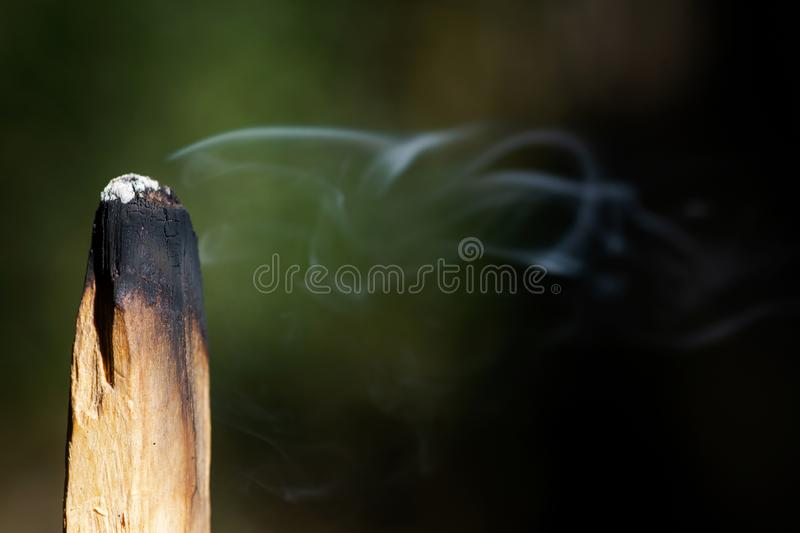 Smudging ceremony using Peruvian Palo Santo holy wood incense stick in forest. Preserve stock images