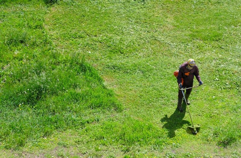 Smussatura dell'erba con il decespugliatore alimentato a gas immagine stock libera da diritti