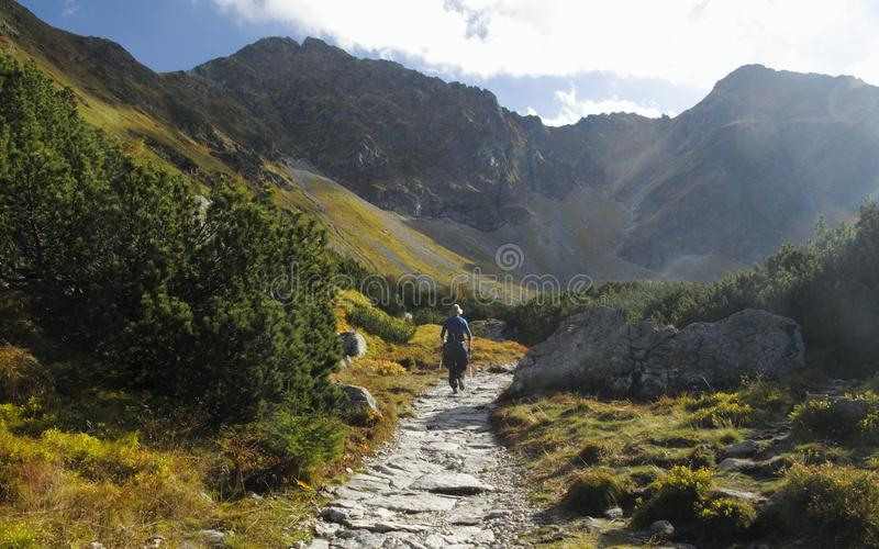 Smutna dolina in West Tatra mountains in Slovakia royalty free stock image