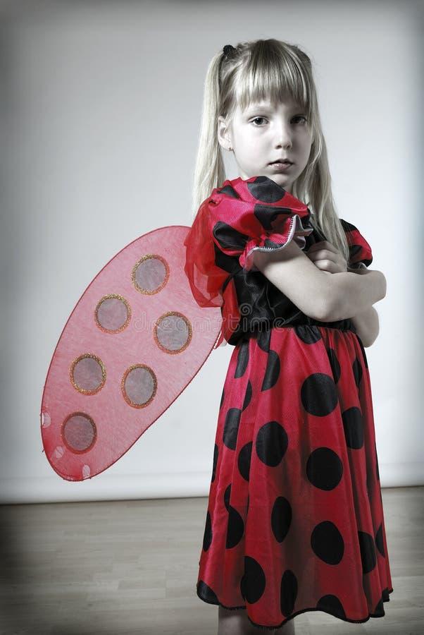 smutne ladybird zdjęcie stock