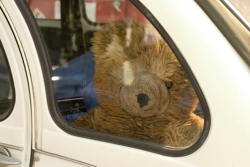 smutne teddy bear zdjęcie stock