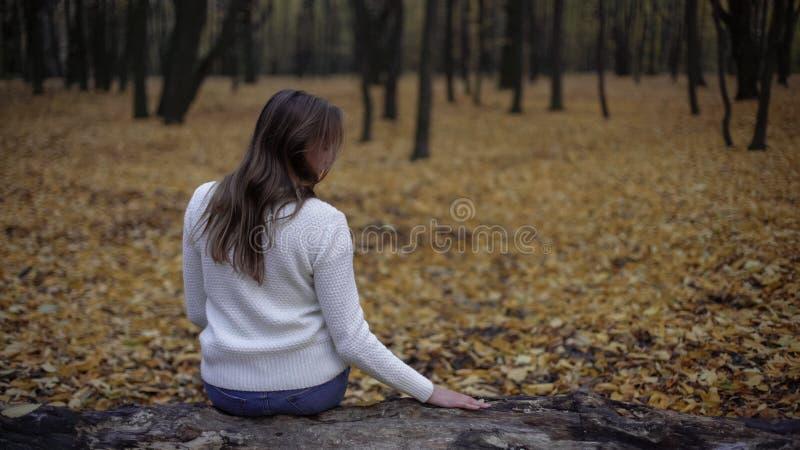 Smutny kobiety obsiadanie w jesień parkowym pamięta zmarłym mężu, strata kocham jeden fotografia stock
