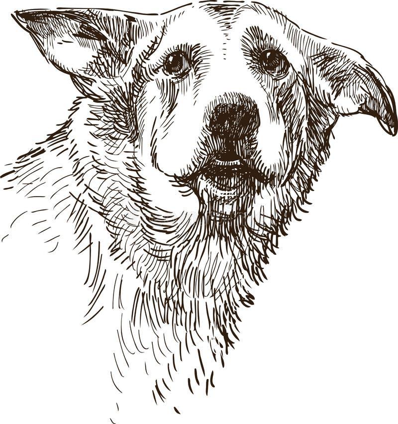 Smutny pies ilustracji