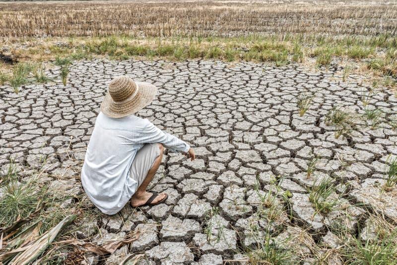 Smutny rolnik siedzi w rolniczym polu podczas długiej suszy obrazy stock