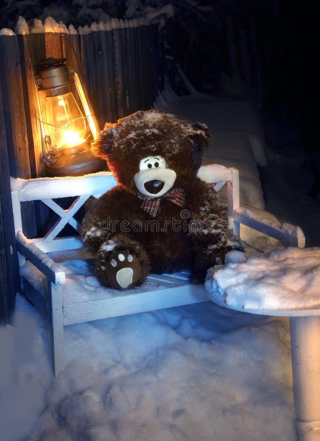 Smutny zaniechany niedźwiedź przyschnięte zabawki Zrzuceni niedźwiedzie Zamarznięci niedźwiedzie zdjęcie royalty free