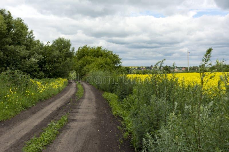 Smuts landsväg i ett lantligt läge, gräs, gula blommor, s royaltyfri bild