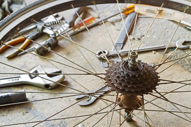 Smutsa ner cykeln av det bakre tandhjulhjulet royaltyfri bild