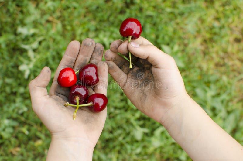Smutsa ner händer med frukt Barn hygien, begreppet av riktigt hy royaltyfria foton