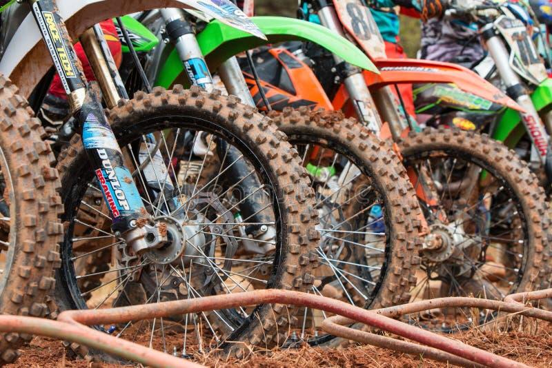Smutscykelgummihjul uppställda på starten av motocrossloppet royaltyfri bild