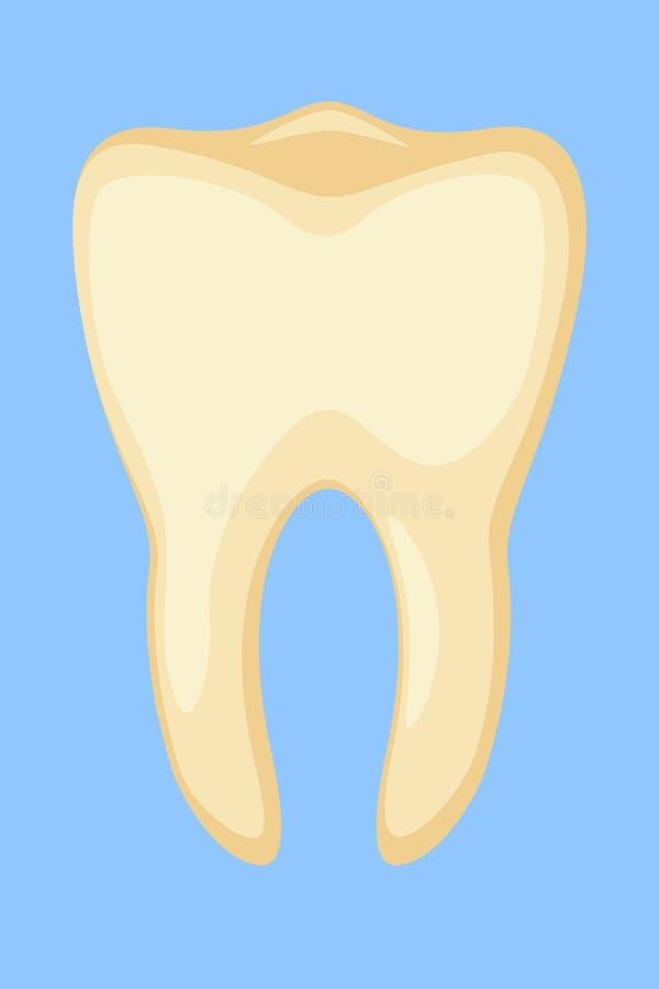 Smutsig gul tand för färgrik tecknad film stock illustrationer