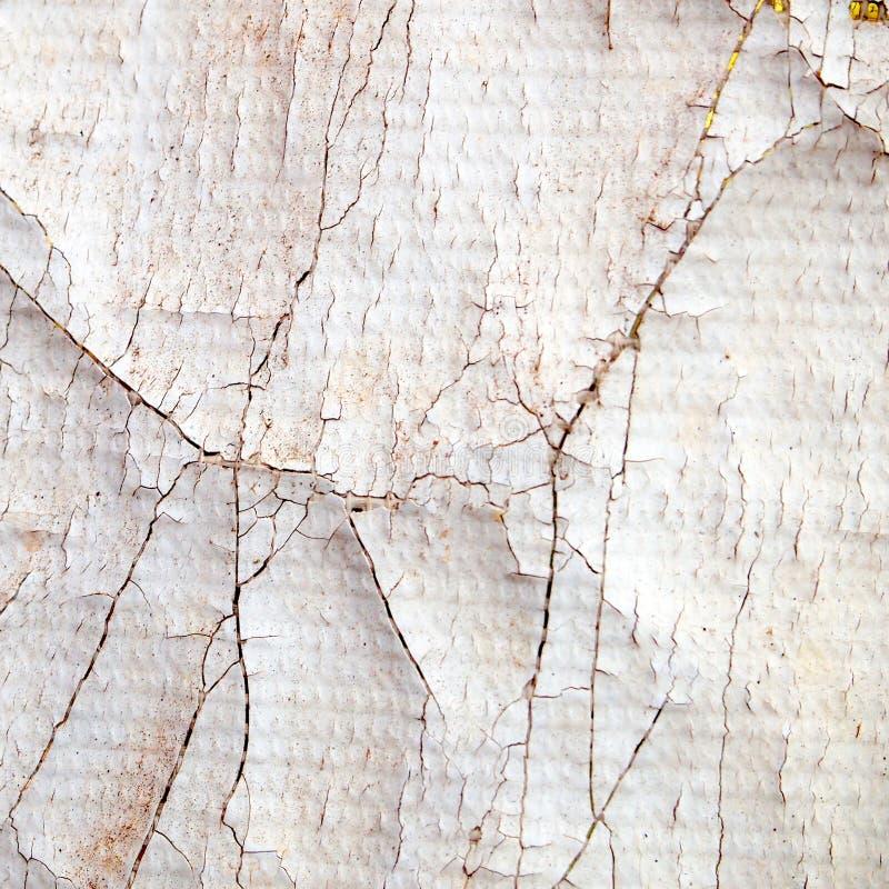 Smutsig plast- f?r spricka arkivbild