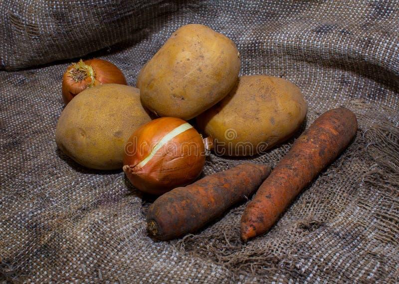 Smutsiga grönsaker på säckväv arkivbilder