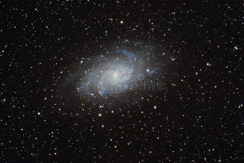 Smutsigare galax 33 royaltyfri bild