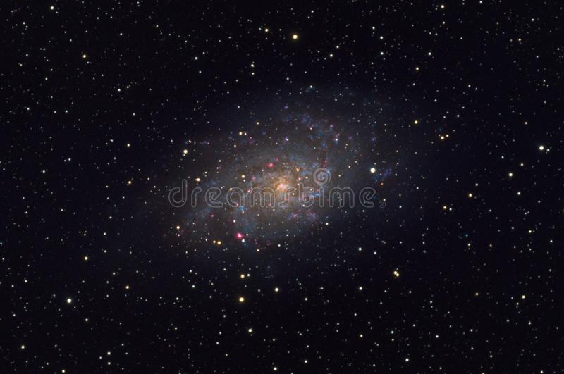 Smutsigare galax för 33 Triangulum i konstellationen Triangulum royaltyfri bild