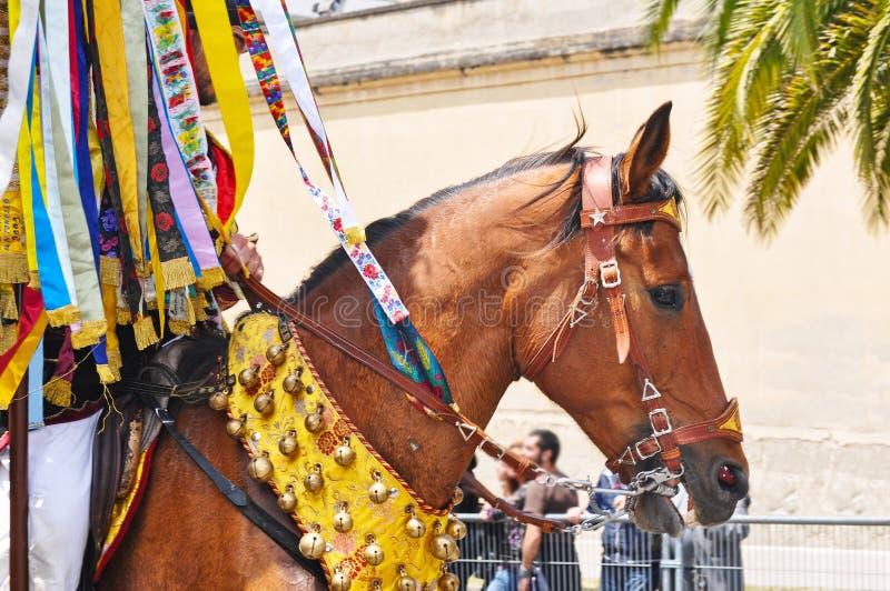 Smyckad häst royaltyfri fotografi