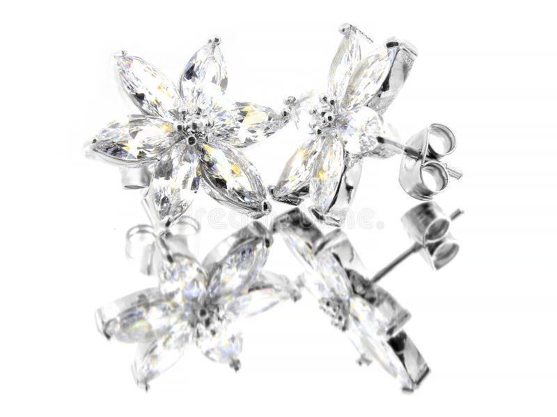 Smyckenörhängen för kvinnor - rostfritt stål och kubikZircons royaltyfria foton