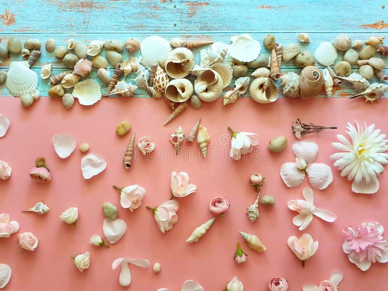 Snäckskal- och havsstenar på träblå bakgrund med vit rosa blommabegreppsbakgrund royaltyfria foton