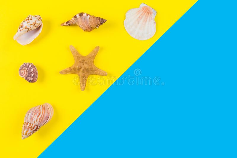 Snäckskal och sjöstjärna på blått- och gulingbakgrund Semester lopp, sommarbegrepp royaltyfri bild
