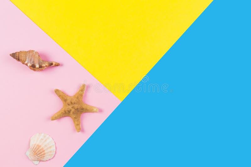 Snäckskal och sjöstjärna på blått- och gulingbakgrund Semester lopp, sommarbegrepp royaltyfri fotografi