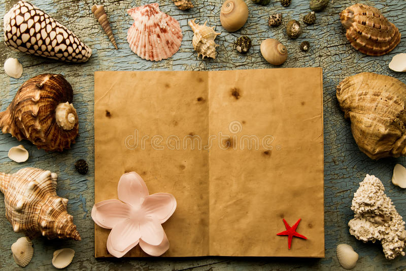 Snäckskal och sjöstjärna på den gamla spruckna blåa bakgrunden öppna en gammal bok arkivfoto