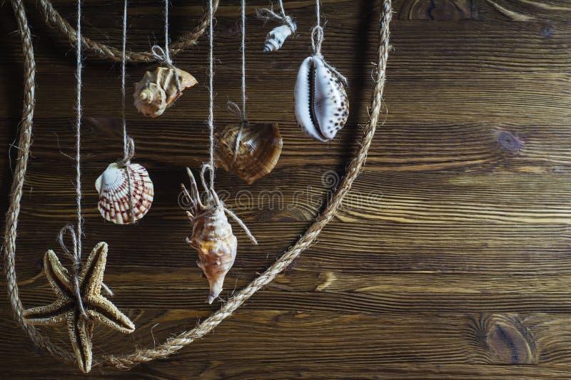 Snäckskal och sjöstjärna som hänger på repet, utforma för tappning royaltyfri bild