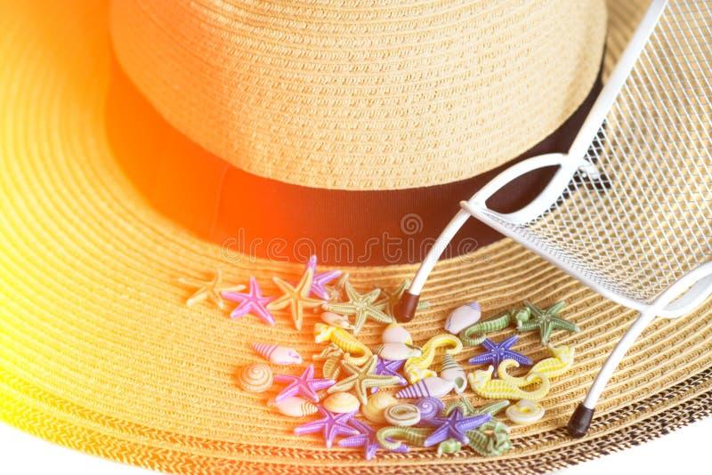 Snäckskal sunbeds på bakgrund av sommarsugrörhatten, isolerat som tonas med solljus Loppbakgrund med solljus arkivbilder