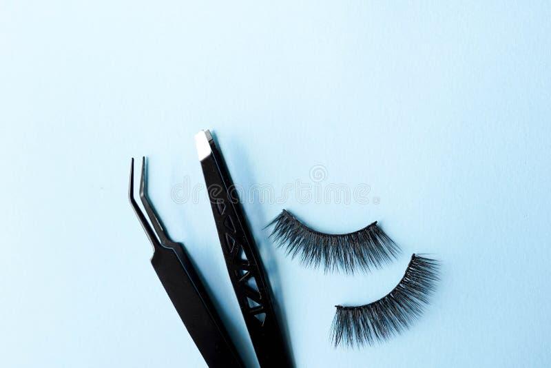 Snärtar för falskt öga, svart pincett på blå bakgrund med kopieringsutrymme, modell Skönhetbegrepp - hjälpmedel för ögonfransförl royaltyfri fotografi