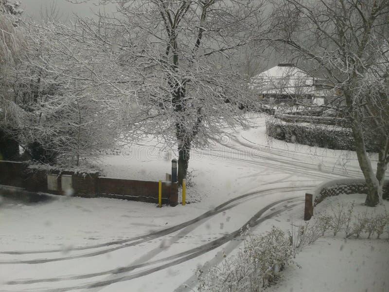 Snö? arkivfoton