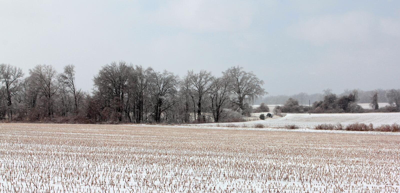 Snö dolda Tennessee Plains arkivfoto
