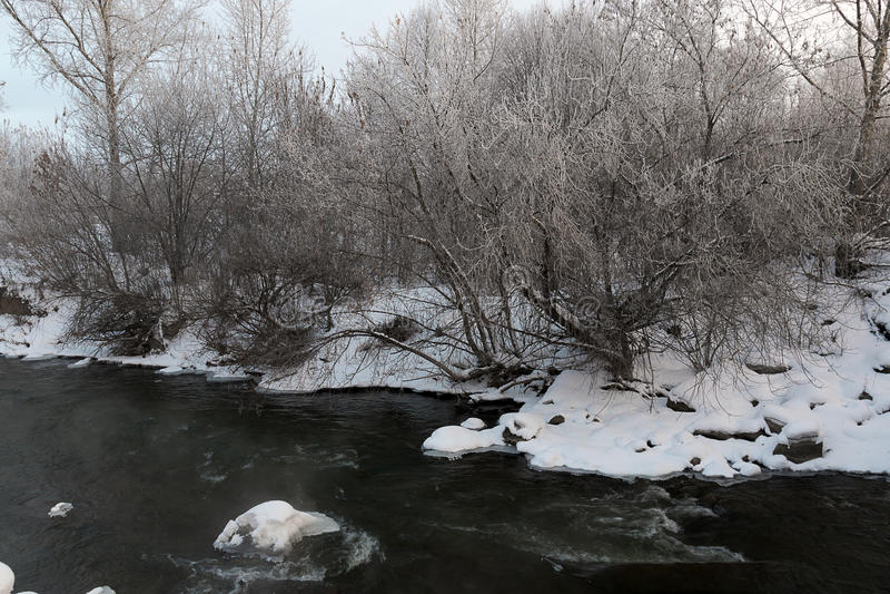 Snö driver på floden royaltyfri bild
