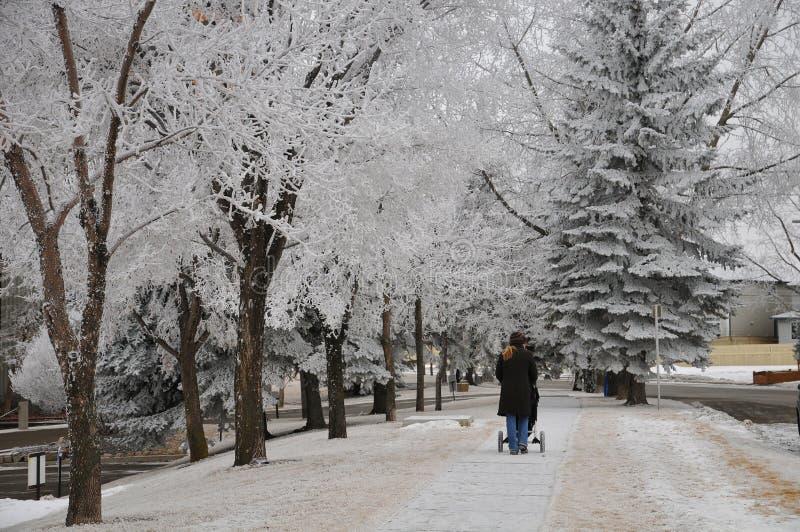 Snö eller regn blir sunda En unidentifiable modig moder som går henne för att behandla som ett barn royaltyfria bilder