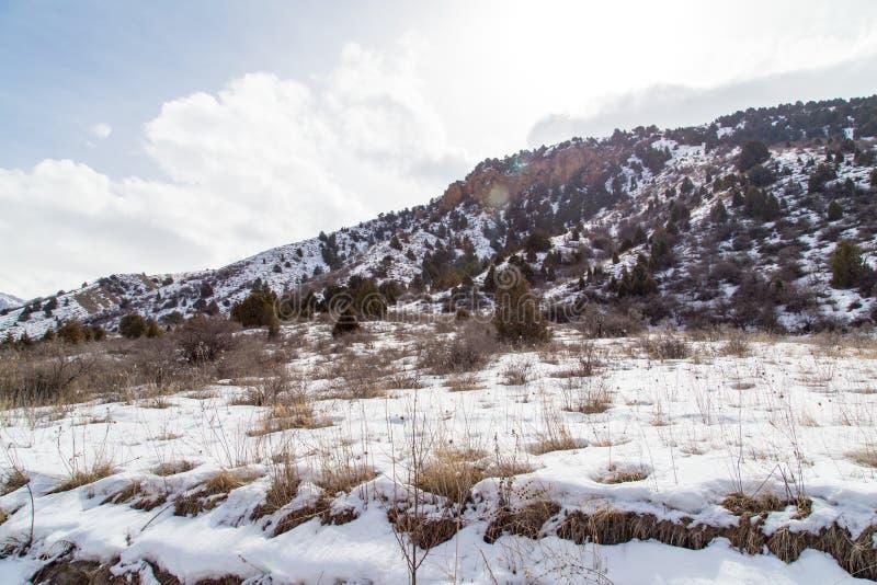 Snö-korkade berg av Tian Shan i vinter fotografering för bildbyråer