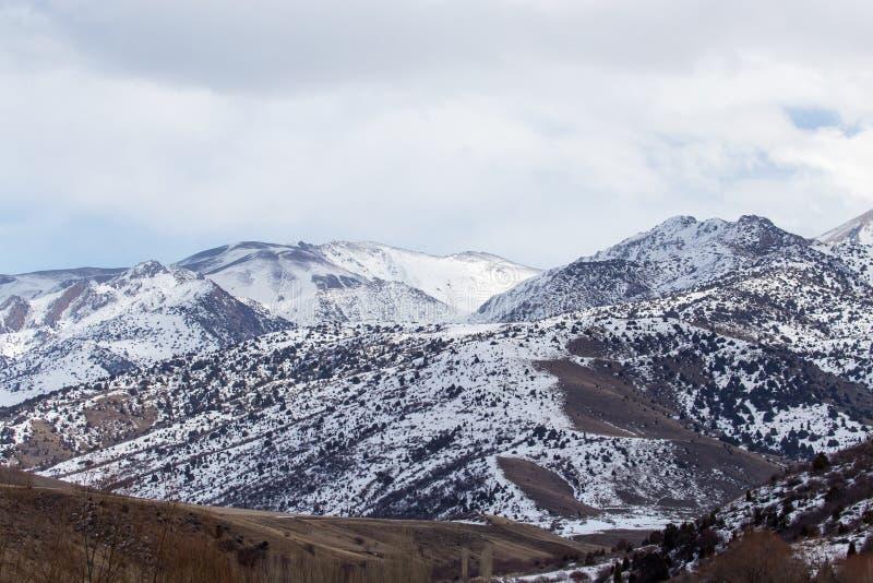 Snö-korkade berg av Tian Shan i vinter royaltyfri bild
