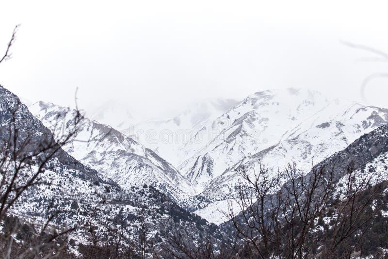Snö-korkade berg av Tian Shan i vinter arkivfoton