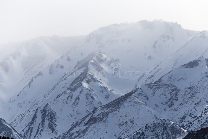 Snö-korkade berg av Tien Shan i vintern kazakhstan arkivbild