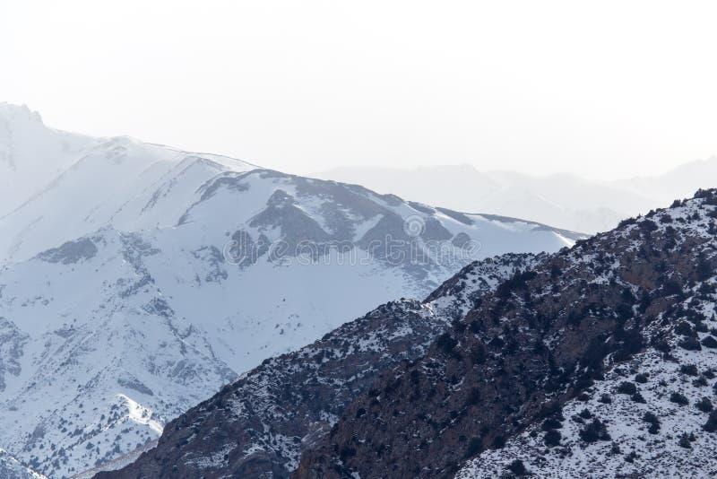 Snö-korkade berg av Tien Shan i vintern kazakhstan royaltyfri fotografi